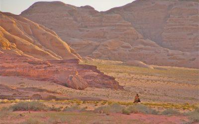 Woestijnreis van Arda